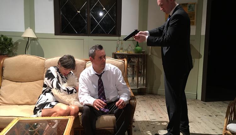 Francis Durbridge's Suddenly At Home actors